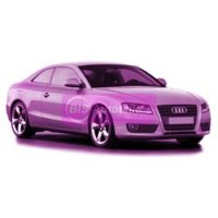 Audi A5 8T3/8F 05/2007 - 07/2011 2 Türen